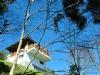 溪頭自然教育園區-超便宜訂房網