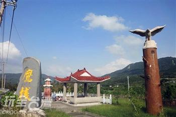 里德村(賞鷹)