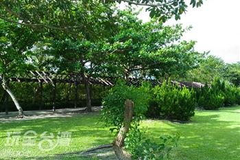 南埔綠森林公園