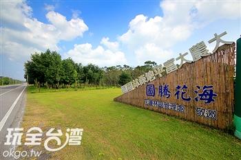 大農大富平地森林園區(圖騰花海 )
