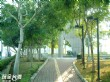 二二八紀念公園
