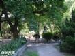 虎尾同心公園
