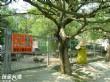 優德親子樂園(石頭公園)