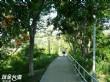 金獅湖風景區