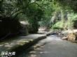 草嶺幽情谷步道