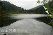 鴛鴦湖自然生態保育區