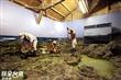 綠島新生訓導處展示館