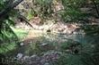 水上瀑布(桃米生態村)