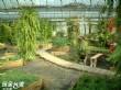 台一生態教育農園