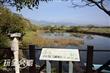 關渡自然公園