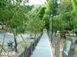豐原中正公園