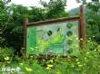 四角林林場