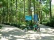 壽山風景區(壽山自然公園)
