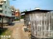 麻豆鹹菜巷