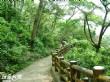 烏山台灣獼猴保護區