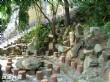 永安宮(鯉魚廟)