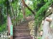 樹之王觀光植物花園