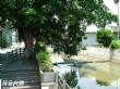 平溪河生態環保示範區