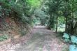 巨埔里觀光休閒步道