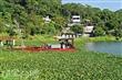 湖光村休閒農業區