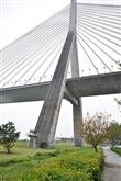 里港斜張橋