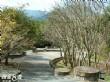 梅山原生種植物園
