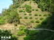 玉穗野溪溫泉