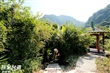 小烏來風景特定區