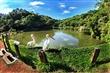 綠世界生態農場(原綠世界休閒農場)