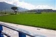 富里農會遊客中心