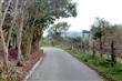 馬錫山下自行車道