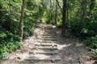 五虎山登山步道