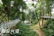 竹崎公園天空走廊‧花仙子步道