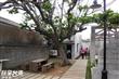 潘安邦紀念館(潘安邦舊居)