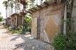 鹿野檳榔樹屋