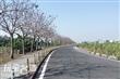 大林自行車道