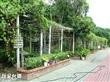 大安生態教育農場