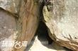 坪瀨琉璃光之橋健行園區.燕子崖、猴洞
