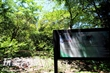 巴陵古道生態園區(幽靜步道)