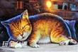 頂溪社區屋頂上的貓