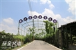 大村觀光葡萄隧道