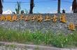 豐濱天空步道(親不知子斷崖)