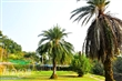虎山花園(虎山農場、虎山藝術館)