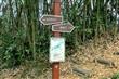 六義山登山步道