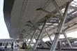 空中的雨林-高捷世運站
