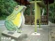 日月潭水蛙頭自然步道