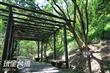 水碓觀景公園