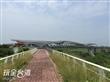 北港女兒橋(北港溪鐵橋、復興鐵橋)