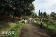 南投市中興新村地方行政研習中心生態池