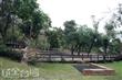 鄧雨賢紀念公園